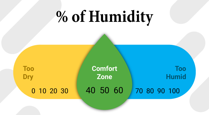How To Deal With Humidity In Edmonton