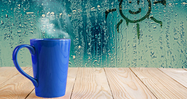 Importance of humidity and how you can control it