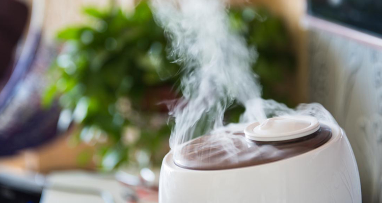 Basic Benefits Of Having A Humidifier