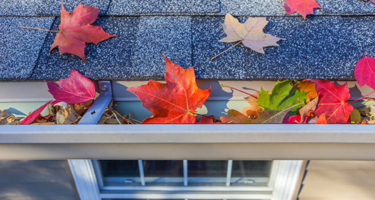 Why Fall Is An Important Season For HVAC Systems