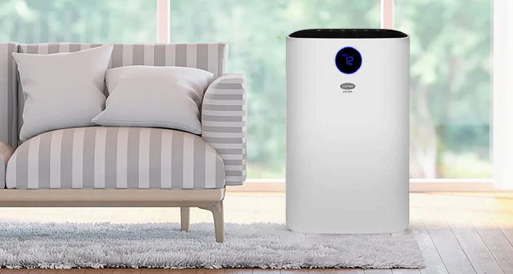 Questions To Ask Before Buying An Air Purifier This Winter