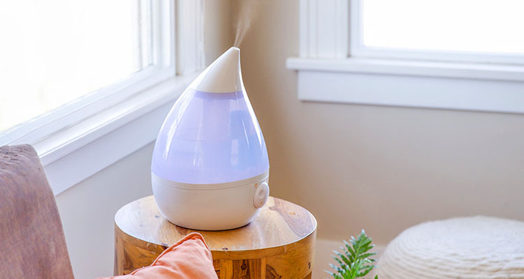 Why Should You Consider A Humidifier This Winter?