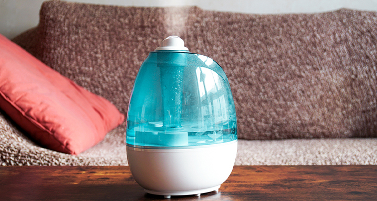 Top Five Health Benefits Of A Humidifier