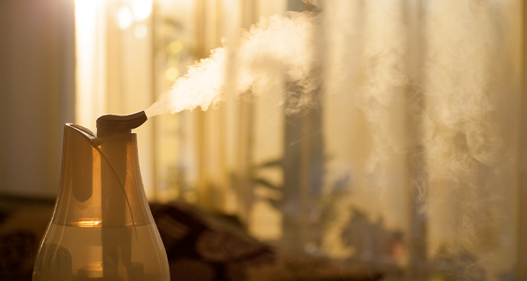 5 Amazing Health Benefits Of Humidifiers In Summer