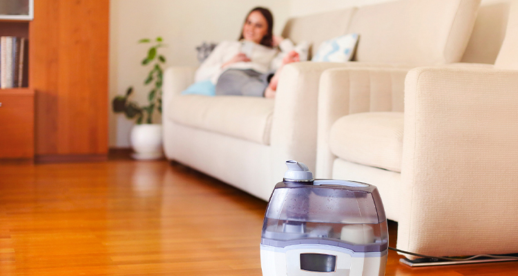 Why Should You Use A Humidifier In The Summer?